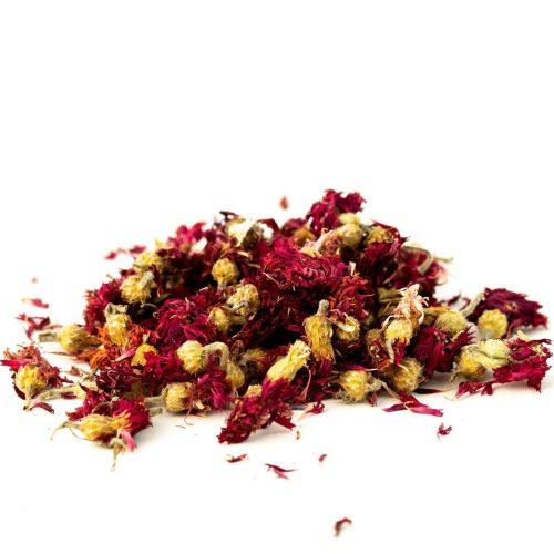 red cornflower whole
