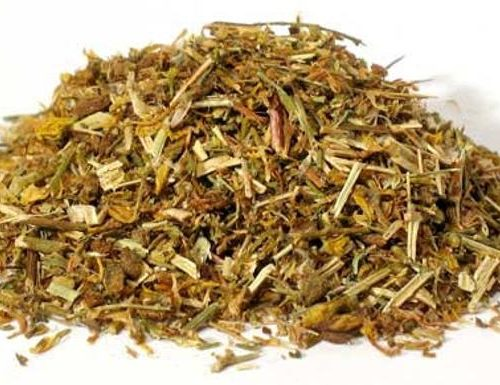 St Johns Wort cut and sifted Saint John's Wort