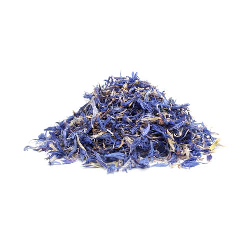 blue cornflower petals Cornflower Blue Petals