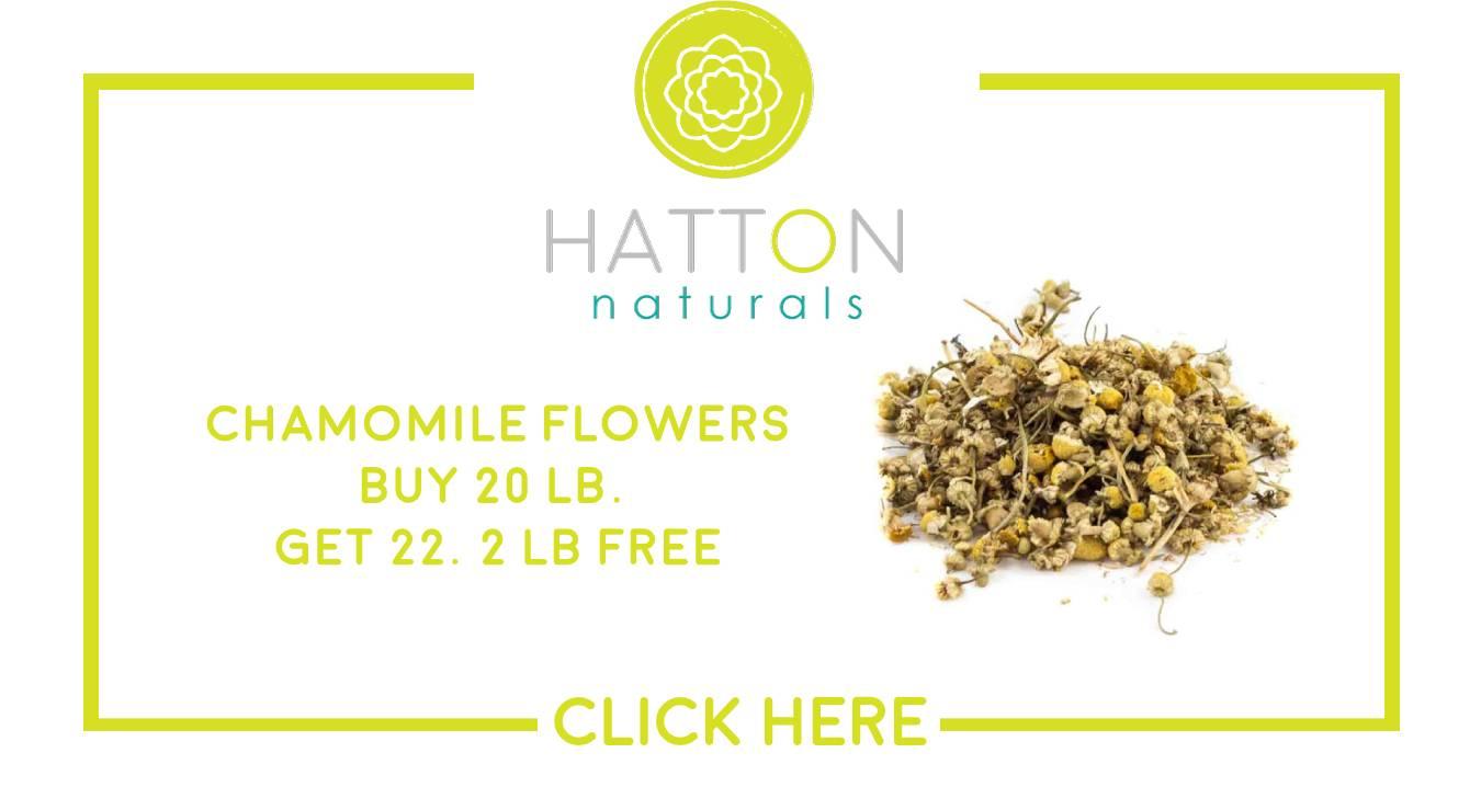 chamonile specials offer discount tea organic