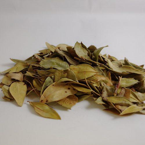 organic myrtle leaf