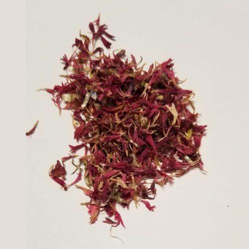 cornflower red petals